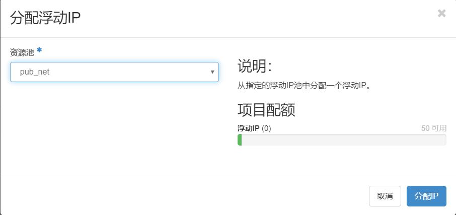 选择公有子网分配IP